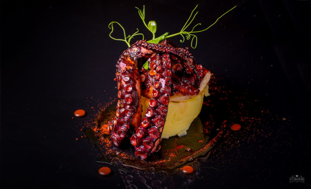 Grilled octopus on mashed potato and olive oil